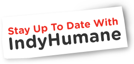 Stay Up To Date With IndyHumane